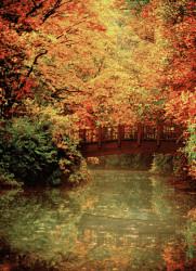 Bridge In The Fall At Old Westbury Gardens