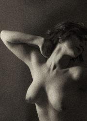 Sepia bodyscape