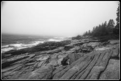 Maine coast fogbw