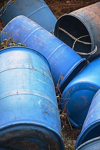 Maine swan barrels