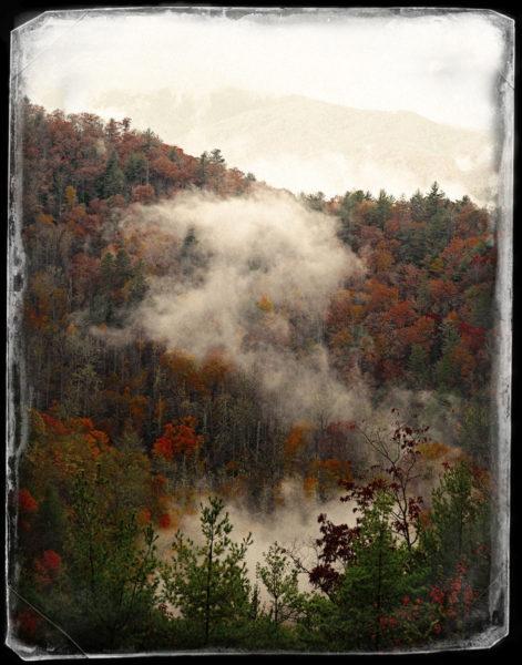 Fall foliage in Autochrome