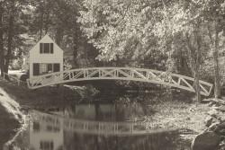 Sommes bridg sepia