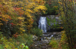 Swift Falls, Smokies