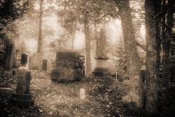 Maine cemetery IR