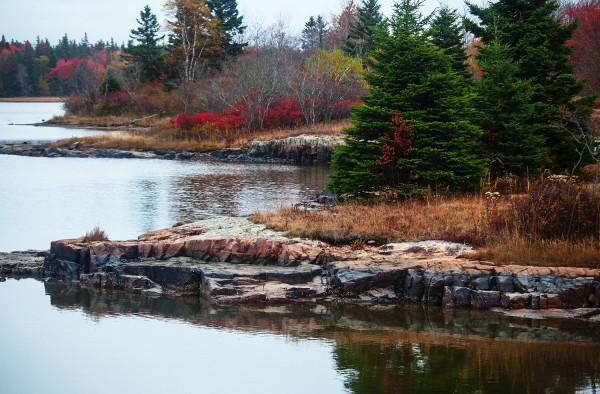 pond rocks1